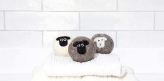 Little Beau Sheep Ltd awarded Wool Innovation Prize