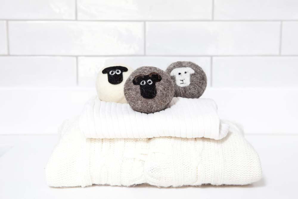 Little Beau Sheep Ltd awarded Wool Innovation Prize